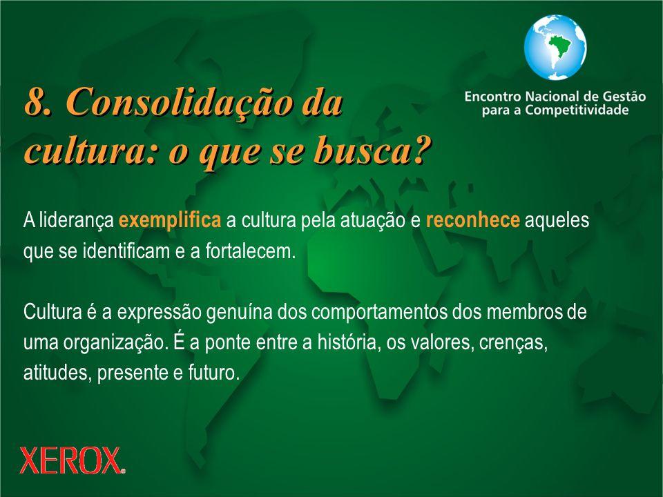 8. Consolidação da cultura: o que se busca