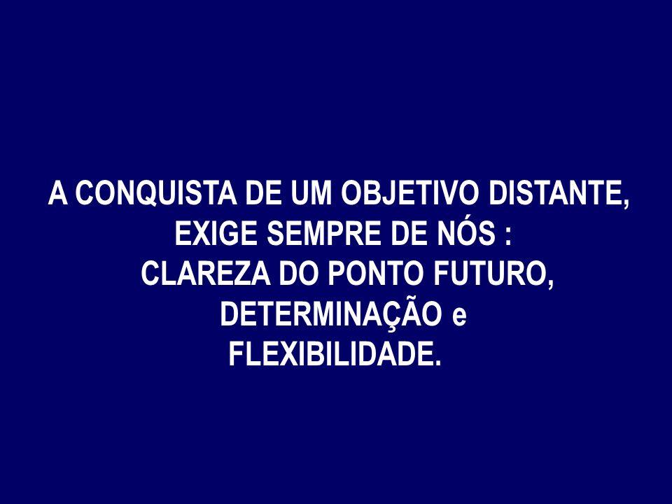 A CONQUISTA DE UM OBJETIVO DISTANTE, CLAREZA DO PONTO FUTURO,