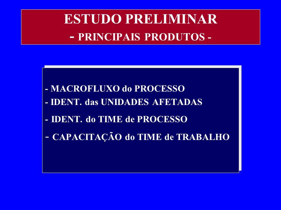 ESTUDO PRELIMINAR - PRINCIPAIS PRODUTOS -