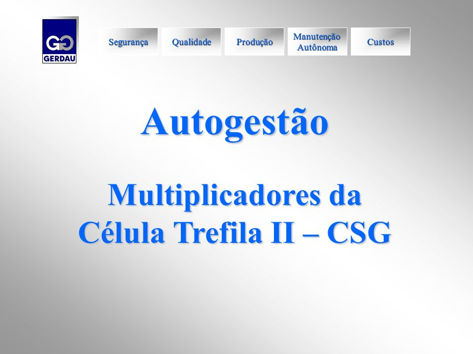 Autogestão Multiplicadores da Célula Trefila II – CSG Segurança