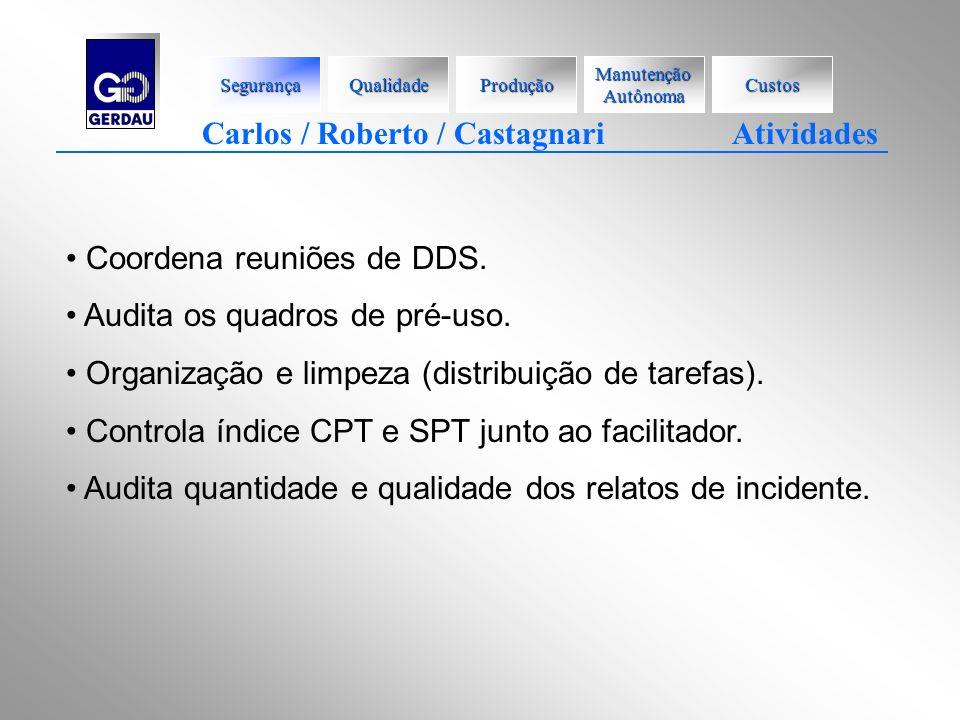 Carlos / Roberto / Castagnari Atividades