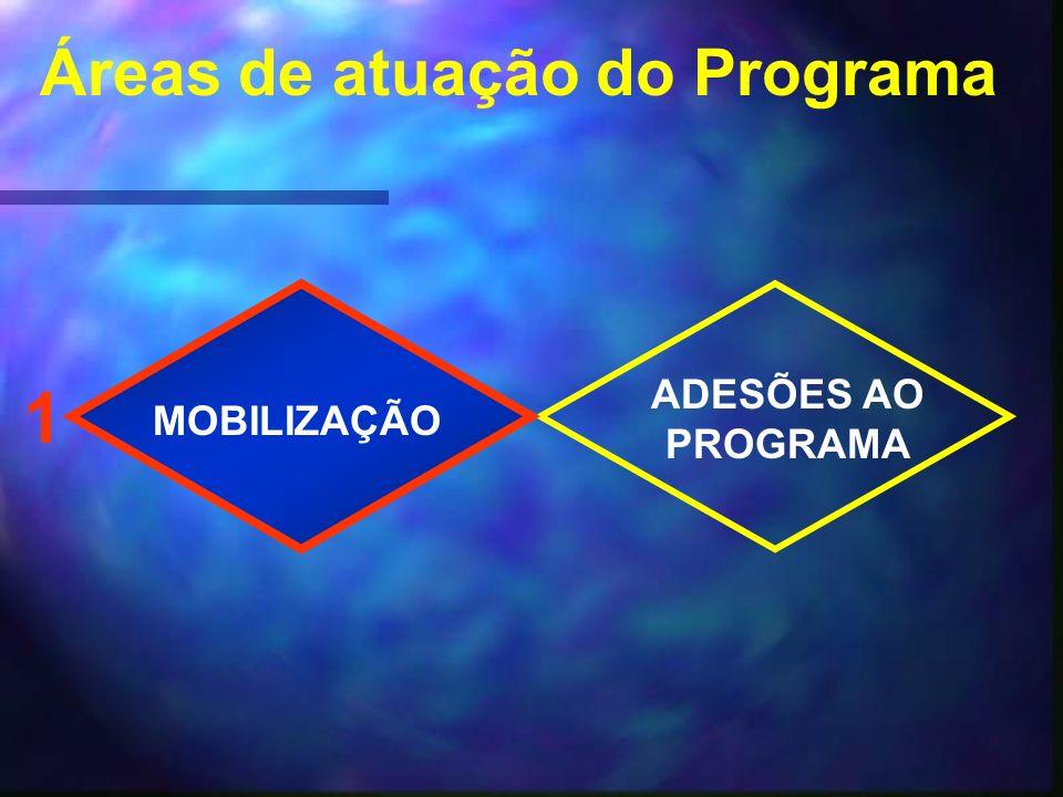 Áreas de atuação do Programa