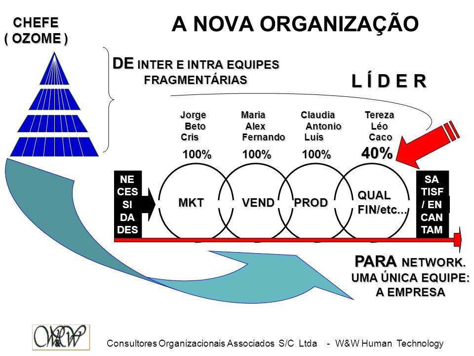 A NOVA ORGANIZAÇÃO L Í D E R DE INTER E INTRA EQUIPES 40%