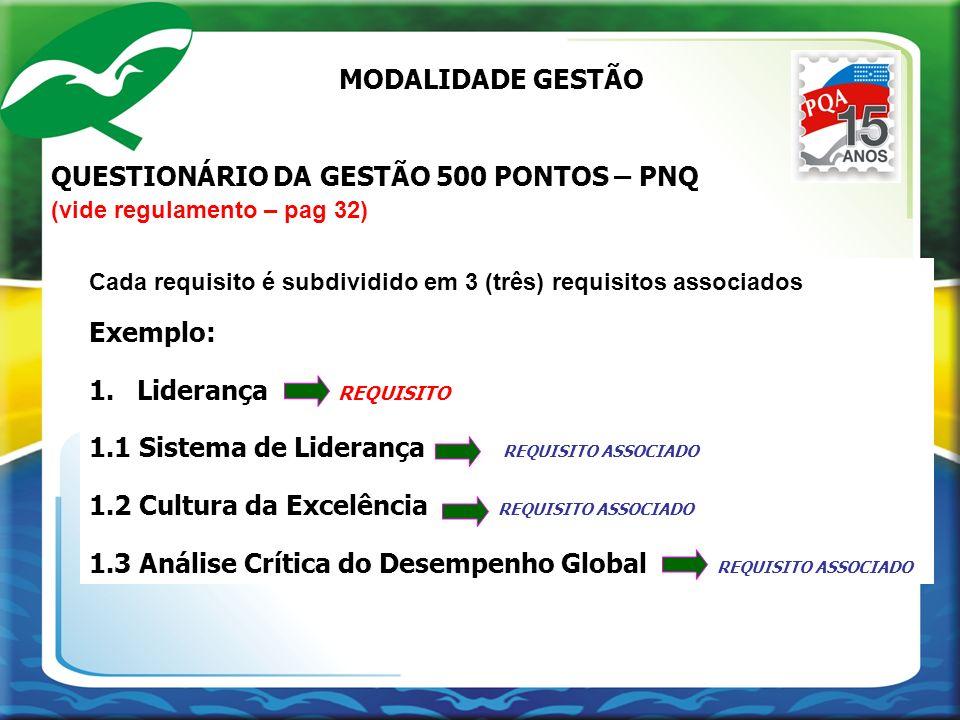 QUESTIONÁRIO DA GESTÃO 500 PONTOS – PNQ
