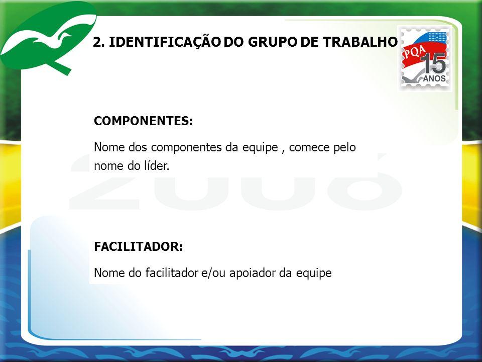 2. IDENTIFICAÇÃO DO GRUPO DE TRABALHO