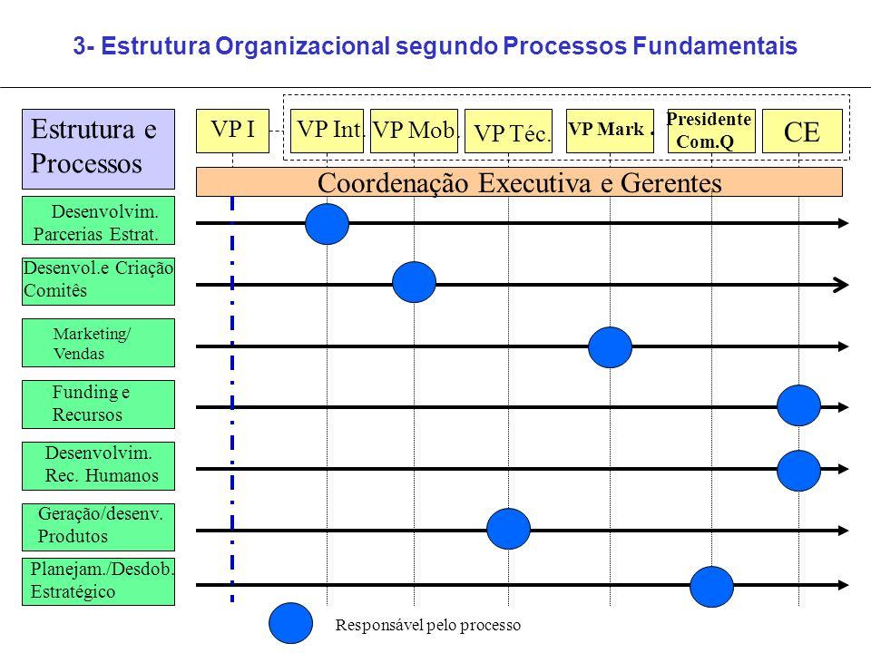 3- Estrutura Organizacional segundo Processos Fundamentais