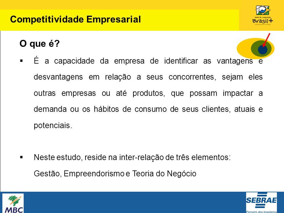 Competitividade Empresarial