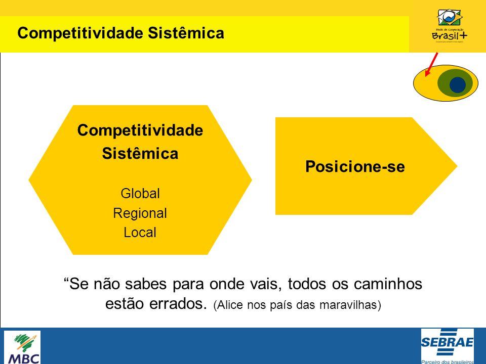 Competitividade Sistêmica Posicione-se