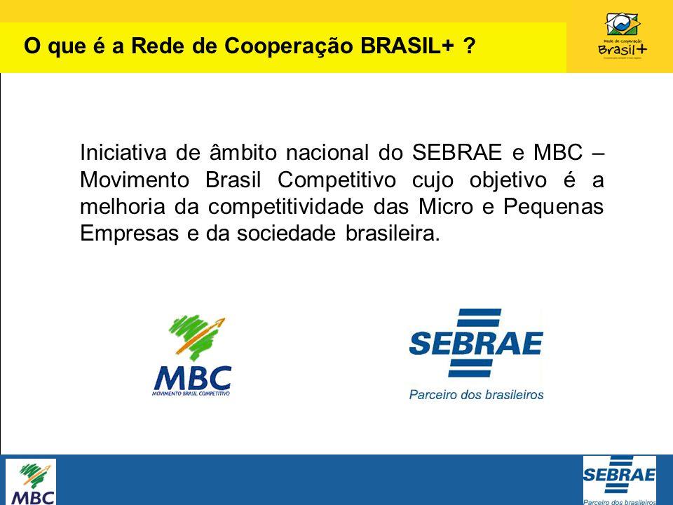 O que é a Rede de Cooperação BRASIL+