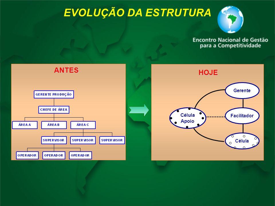 EVOLUÇÃO DA ESTRUTURA Gerente Facilitador Célula Apoio HOJE ANTES