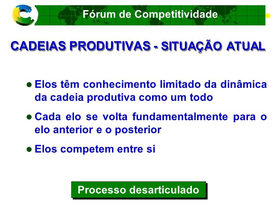 CADEIAS PRODUTIVAS - SITUAÇÃO ATUAL