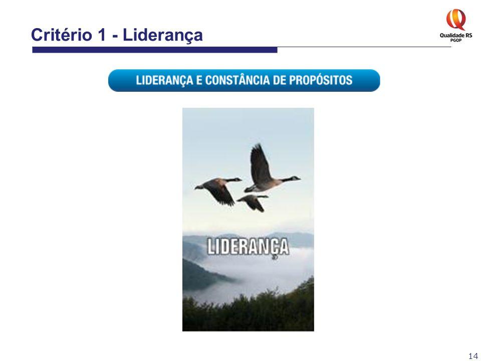 Critério 1 - Liderança