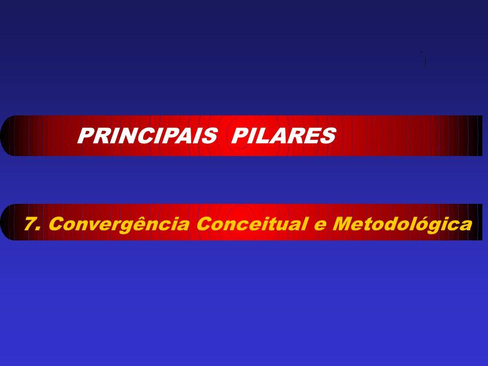 PRINCIPAIS PILARES 7. Convergência Conceitual e Metodológica