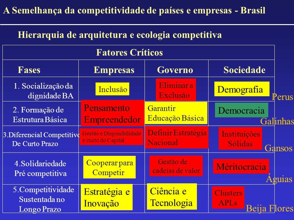 A Semelhança da competitividade de países e empresas - Brasil