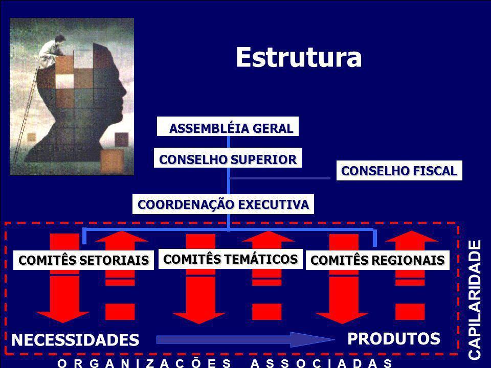 COORDENAÇÃO EXECUTIVA