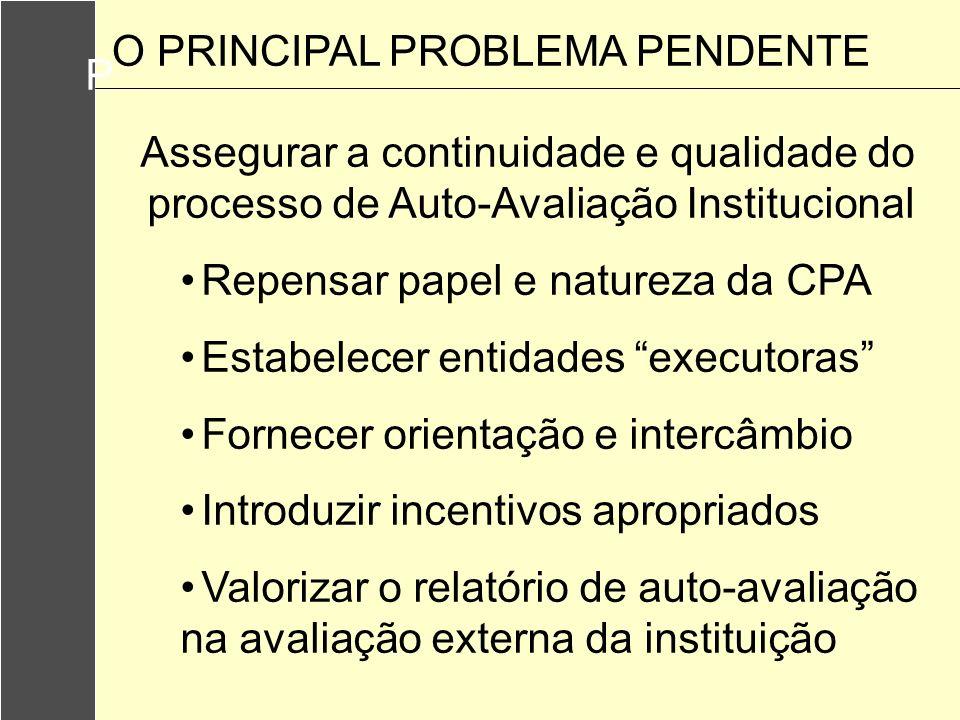 P Assegurar a continuidade e qualidade do processo de Auto-Avaliação Institucional. Repensar papel e natureza da CPA.