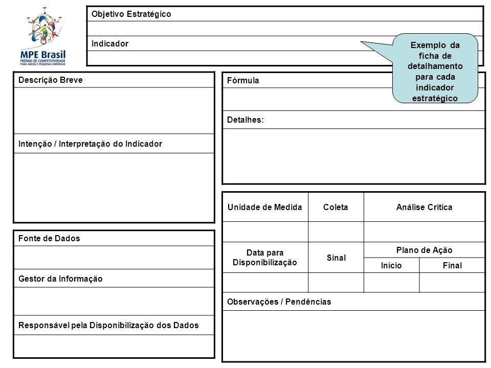 Exemplo da ficha de detalhamento para cada indicador estratégico