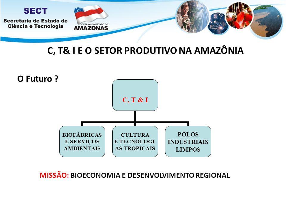 C, T& I E O SETOR PRODUTIVO NA AMAZÔNIA