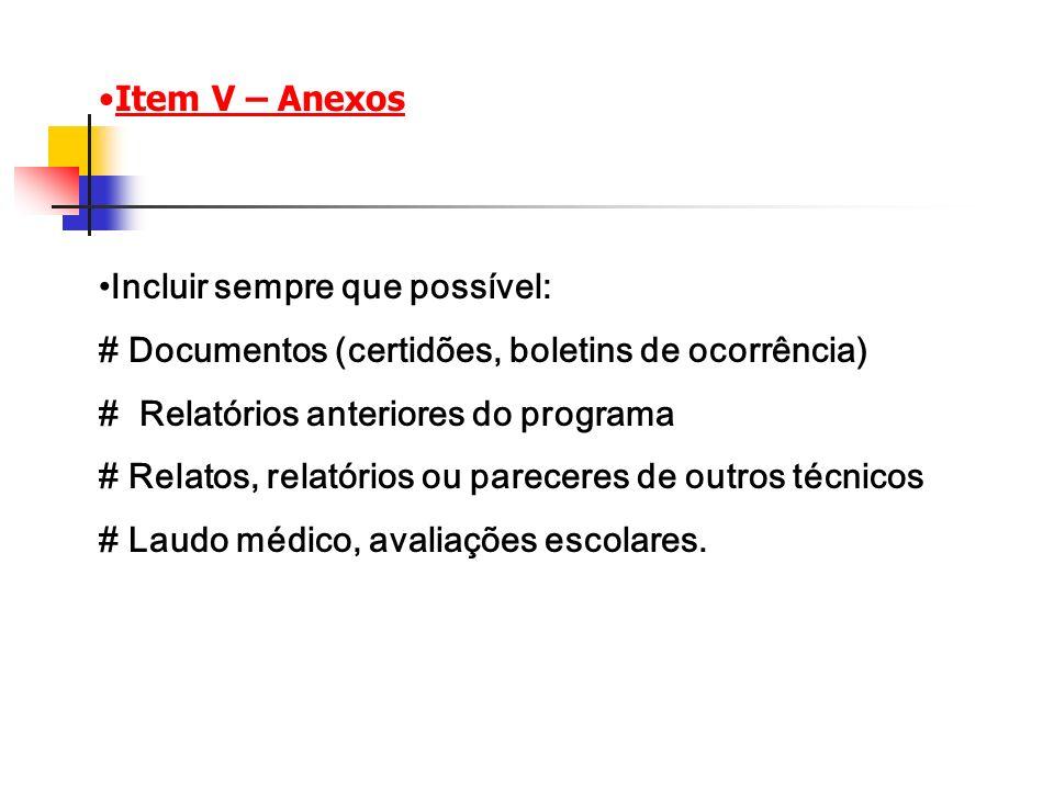 Item V – Anexos Incluir sempre que possível: # Documentos (certidões, boletins de ocorrência) # Relatórios anteriores do programa.