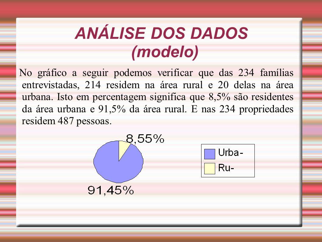 ANÁLISE DOS DADOS (modelo)