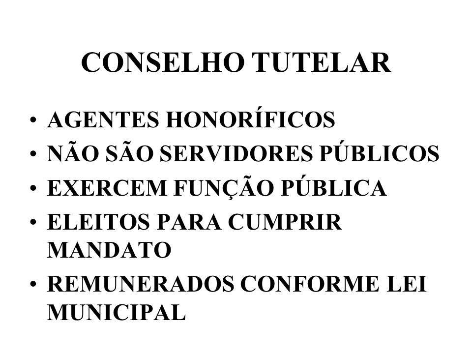 CONSELHO TUTELAR AGENTES HONORÍFICOS NÃO SÃO SERVIDORES PÚBLICOS