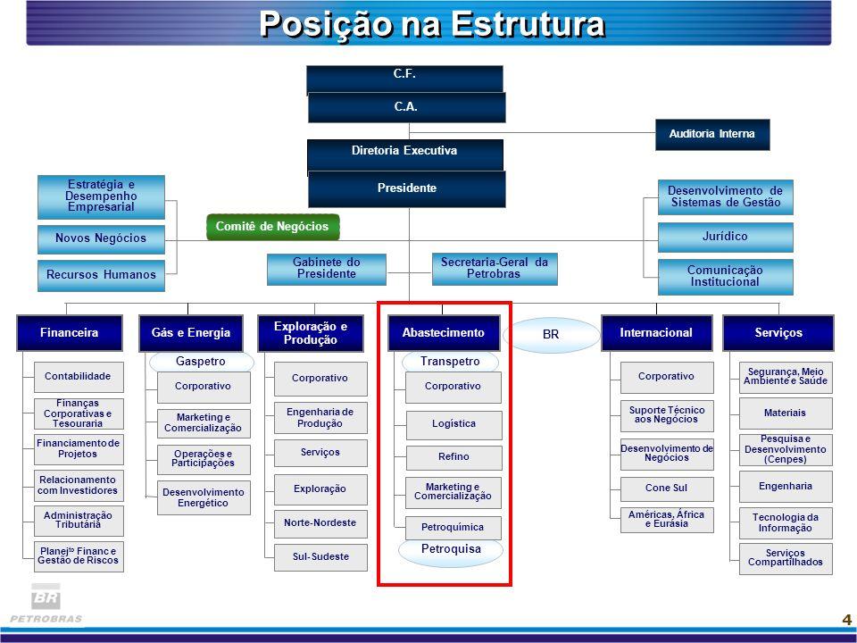 Posição na Estrutura C.F. C.A. Diretoria Executiva Novos Negócios