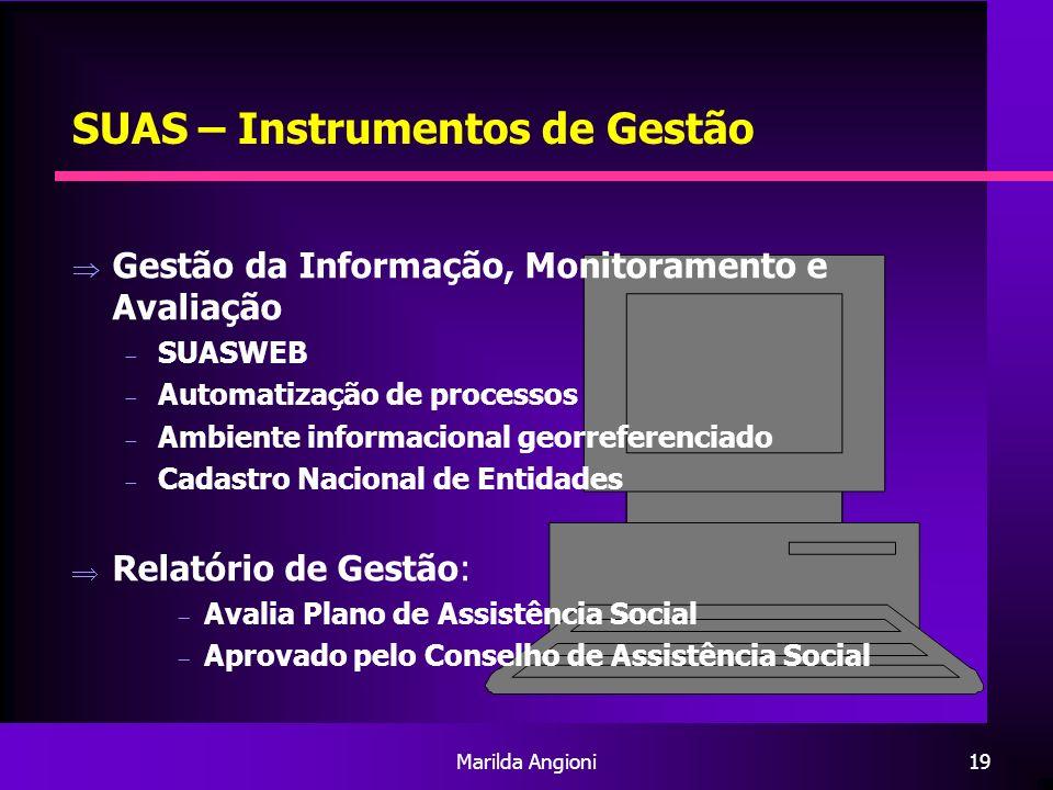 SUAS – Instrumentos de Gestão