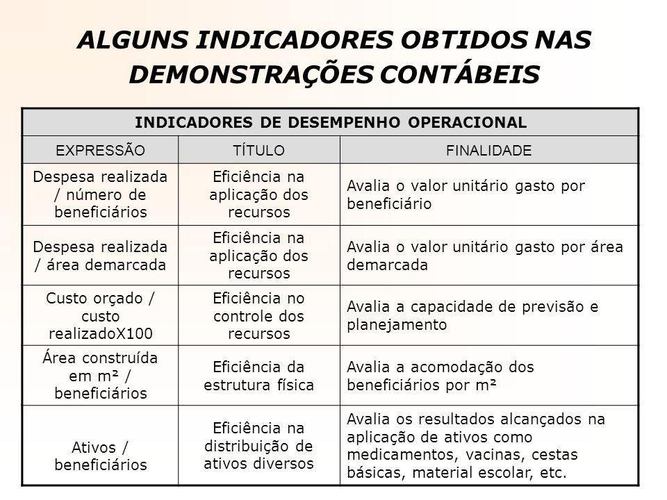 ALGUNS INDICADORES OBTIDOS NAS DEMONSTRAÇÕES CONTÁBEIS