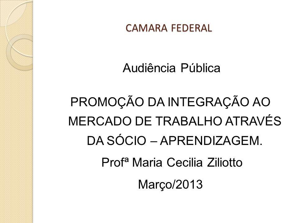 Profª Maria Cecilia Ziliotto