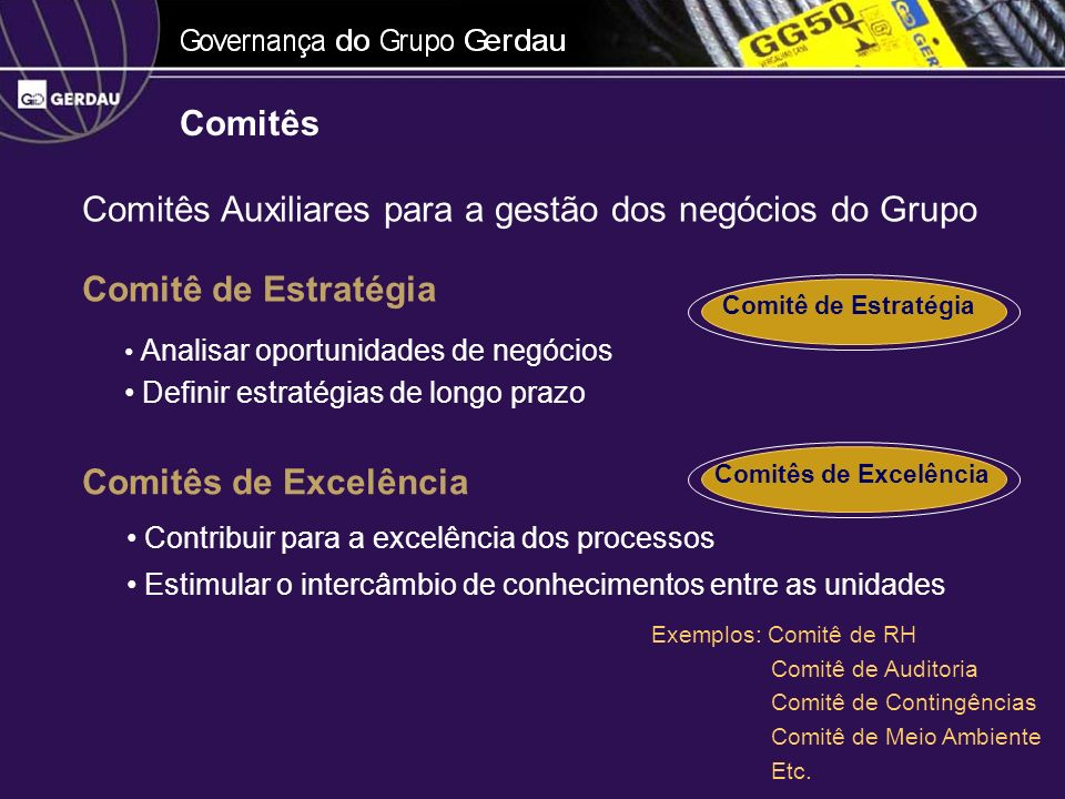 Comitês Auxiliares para a gestão dos negócios do Grupo