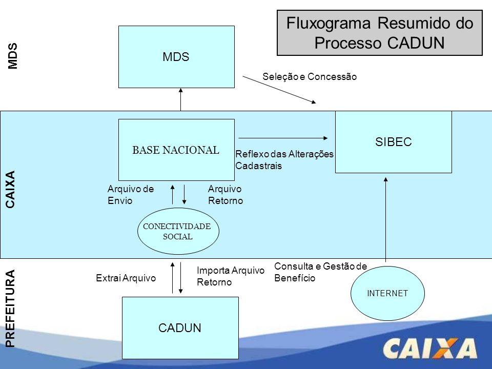 Fluxograma Resumido do Processo CADUN