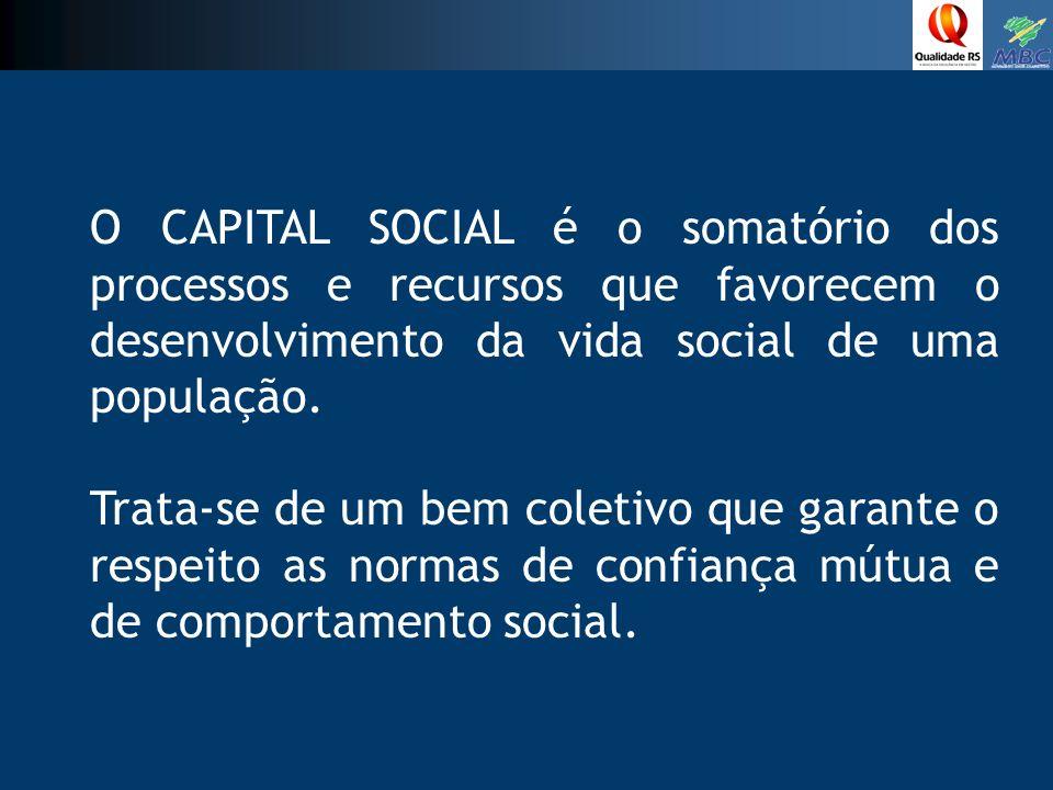 O CAPITAL SOCIAL é o somatório dos processos e recursos que favorecem o desenvolvimento da vida social de uma população.