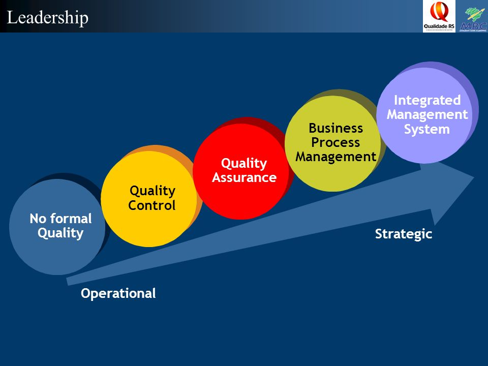 Leadership Integrated Management Business System Process Management