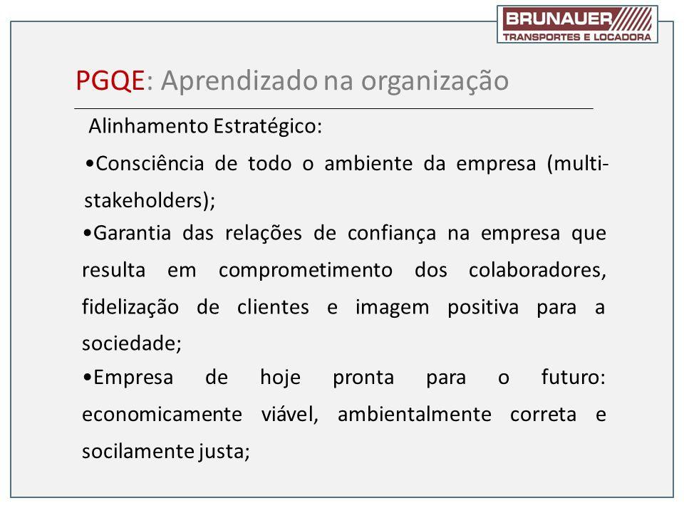 PGQE: Aprendizado na organização