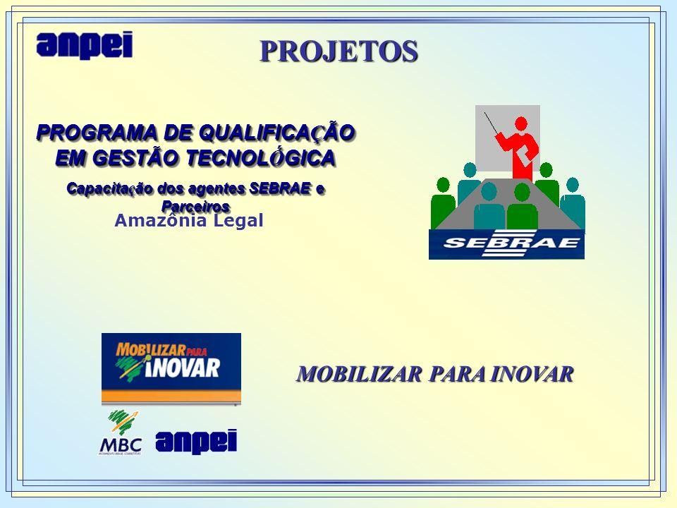PROGRAMA DE QUALIFICAÇÃO Capacitação dos agentes SEBRAE e Parceiros
