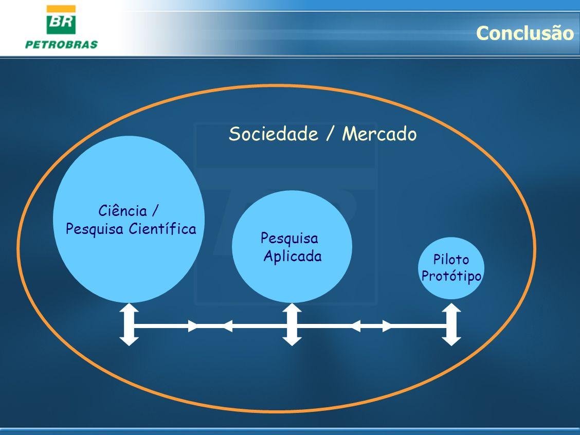 Conclusão Sociedade / Mercado Ciência / Pesquisa Científica Pesquisa