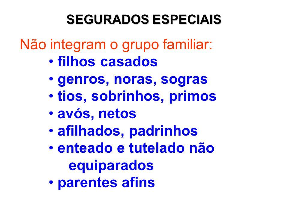 Não integram o grupo familiar: filhos casados genros, noras, sogras