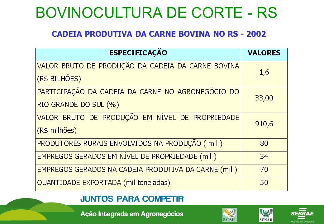 BOVINOCULTURA DE CORTE - RS