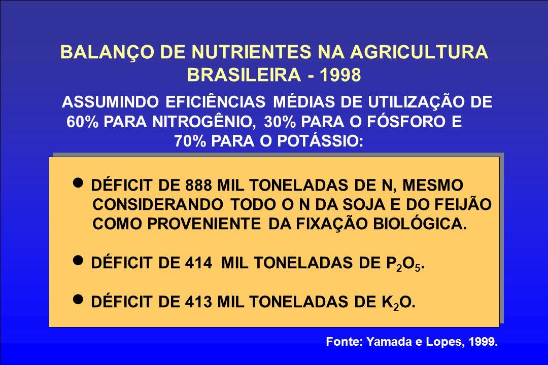 BALANÇO DE NUTRIENTES NA AGRICULTURA BRASILEIRA - 1998