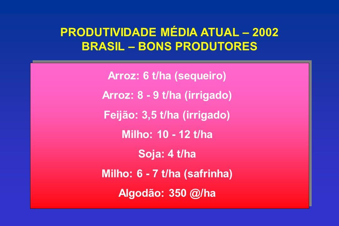 PRODUTIVIDADE MÉDIA ATUAL – 2002 BRASIL – BONS PRODUTORES