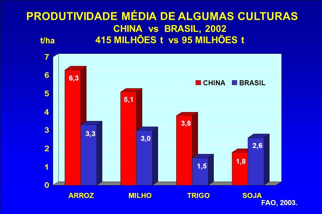 PRODUTIVIDADE MÉDIA DE ALGUMAS CULTURAS CHINA vs BRASIL, 2002 415 MILHÕES t vs 95 MILHÕES t