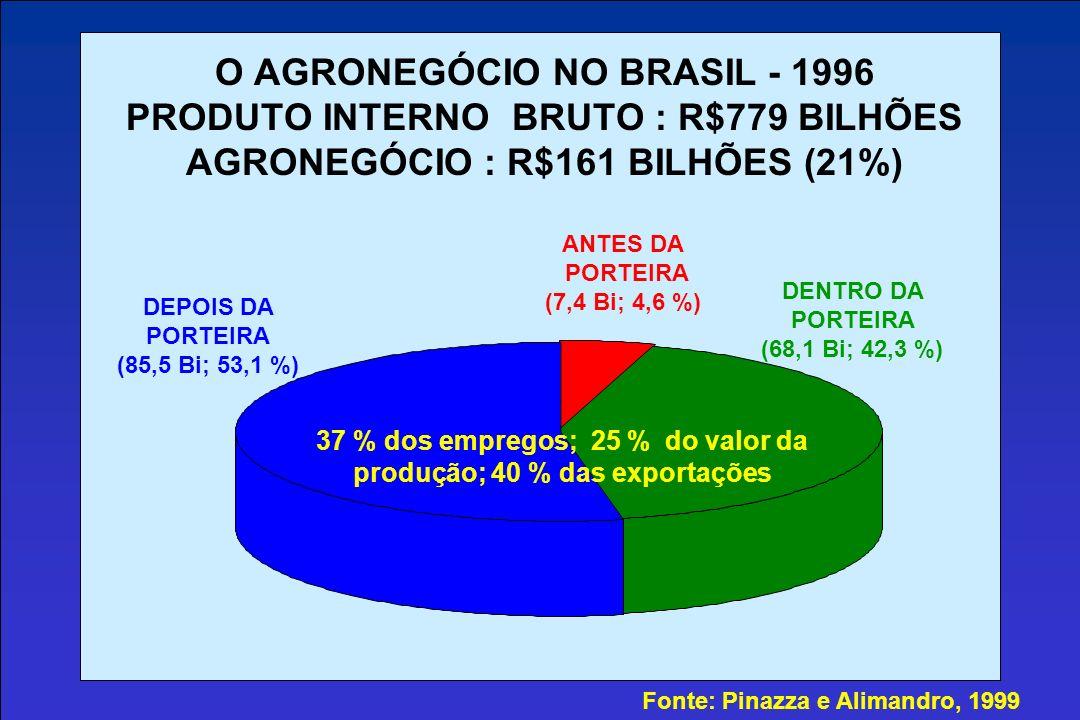 O AGRONEGÓCIO NO BRASIL - 1996 PRODUTO INTERNO BRUTO : R$779 BILHÕES AGRONEGÓCIO : R$161 BILHÕES (21%)