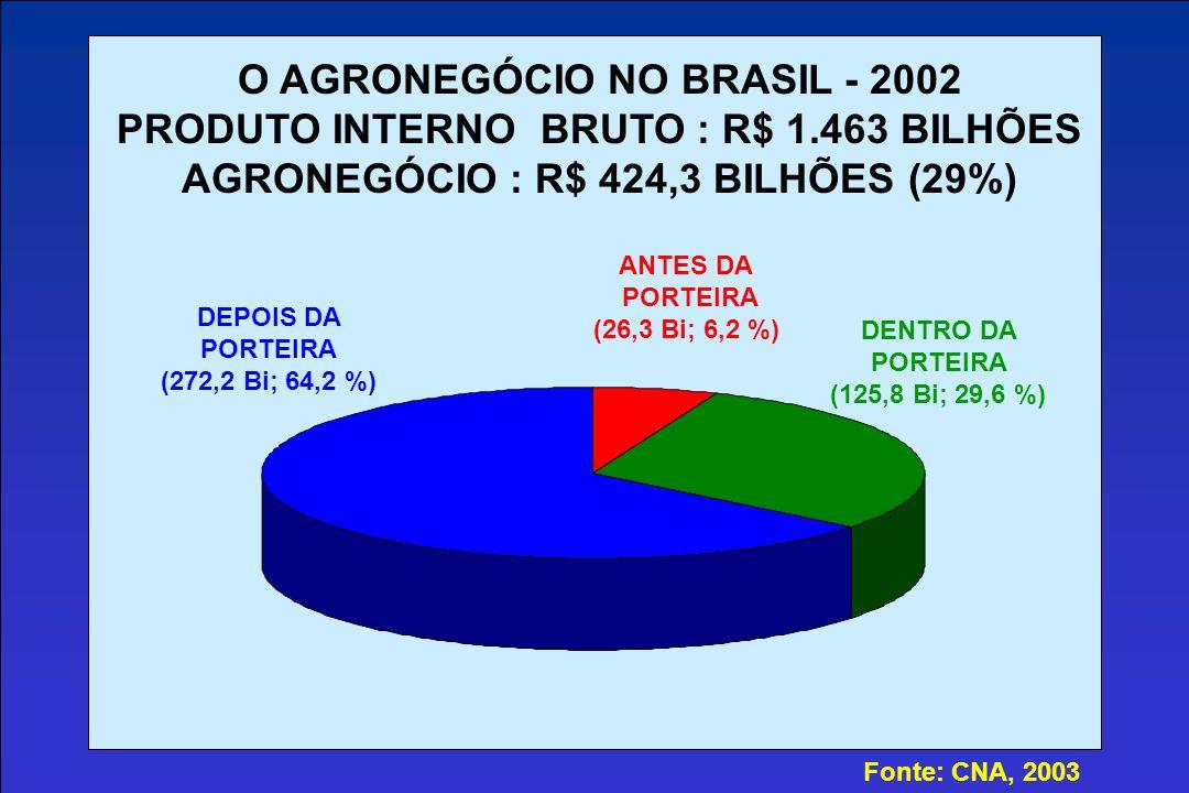 O AGRONEGÓCIO NO BRASIL - 2002 PRODUTO INTERNO BRUTO : R$ 1