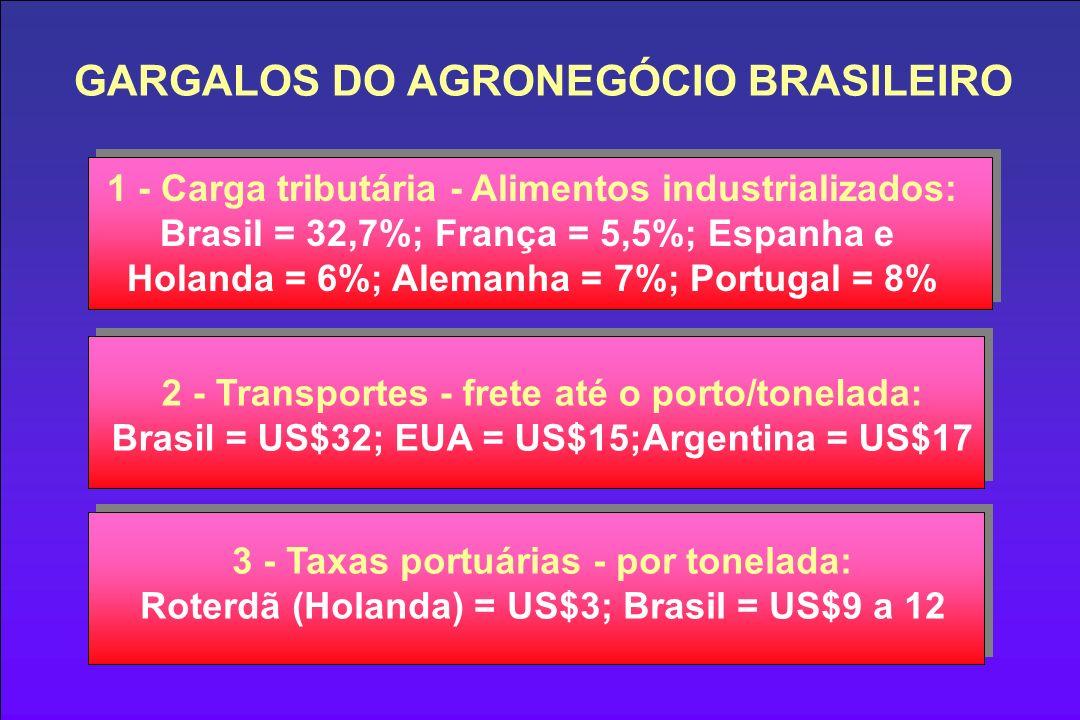 GARGALOS DO AGRONEGÓCIO BRASILEIRO