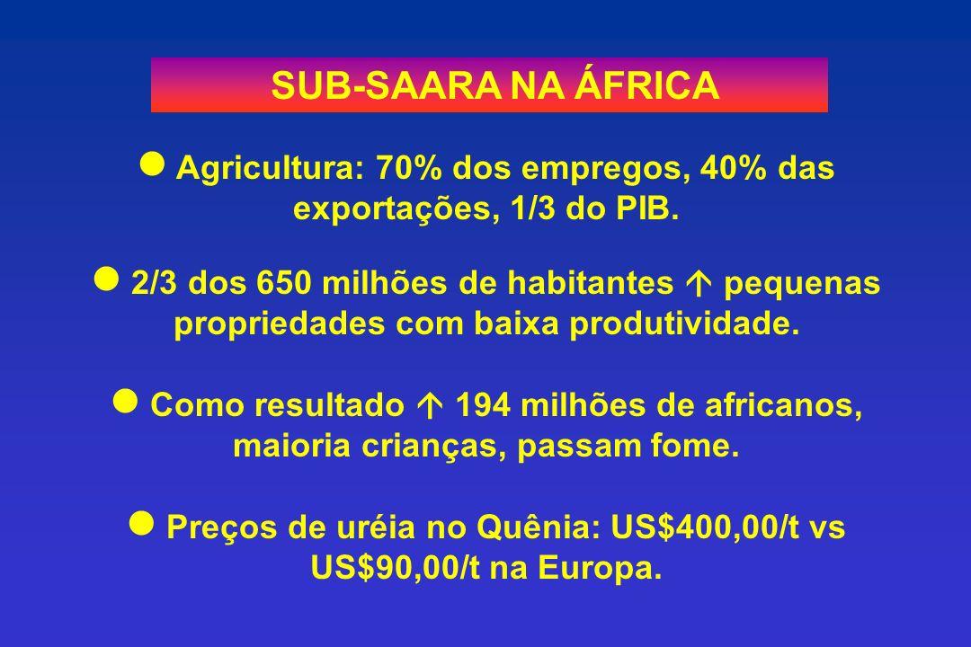 SUB-SAARA NA ÁFRICA Agricultura: 70% dos empregos, 40% das exportações, 1/3 do PIB.