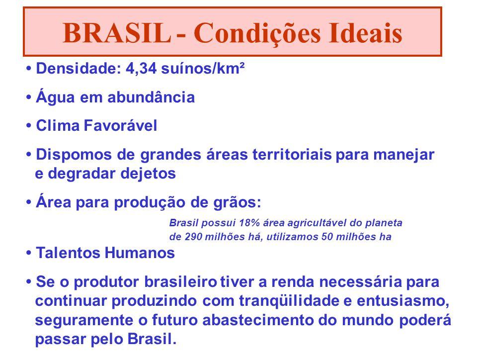 BRASIL - Condições Ideais
