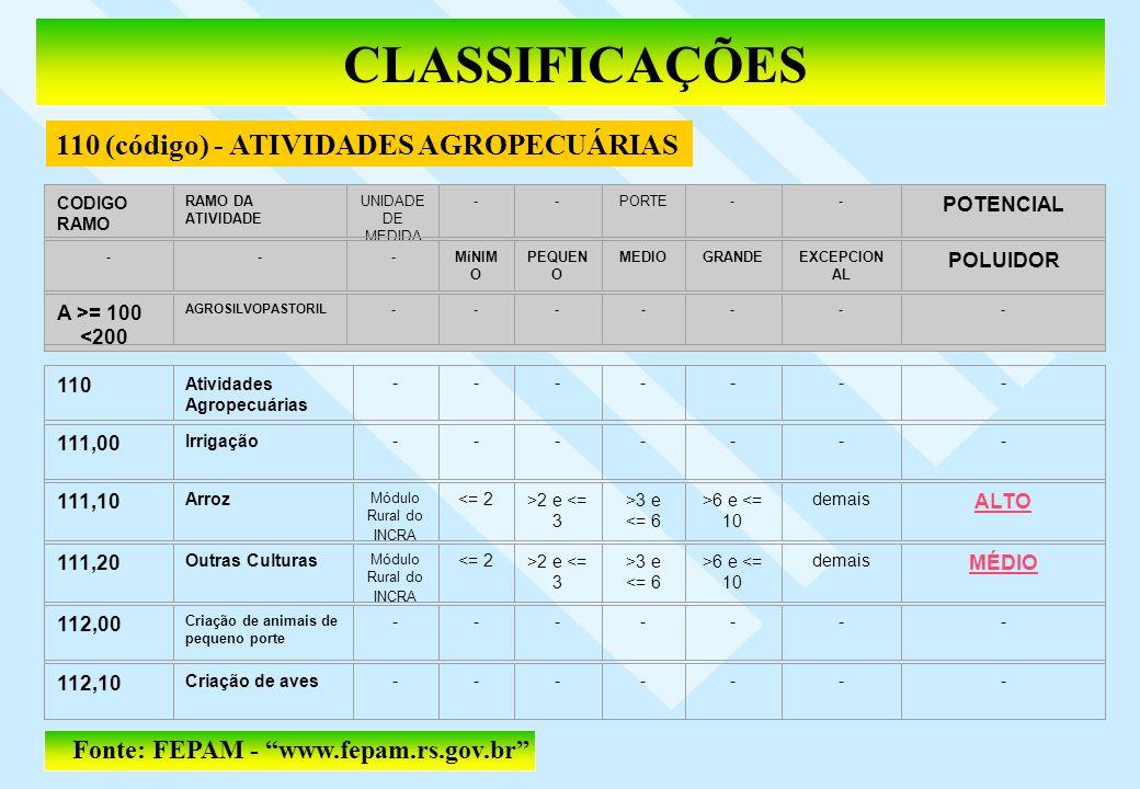 CLASSIFICAÇÕES 110 (código) - ATIVIDADES AGROPECUÁRIAS