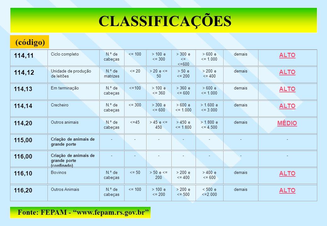 CLASSIFICAÇÕES (código) Fonte: FEPAM - www.fepam.rs.gov.br 114,11