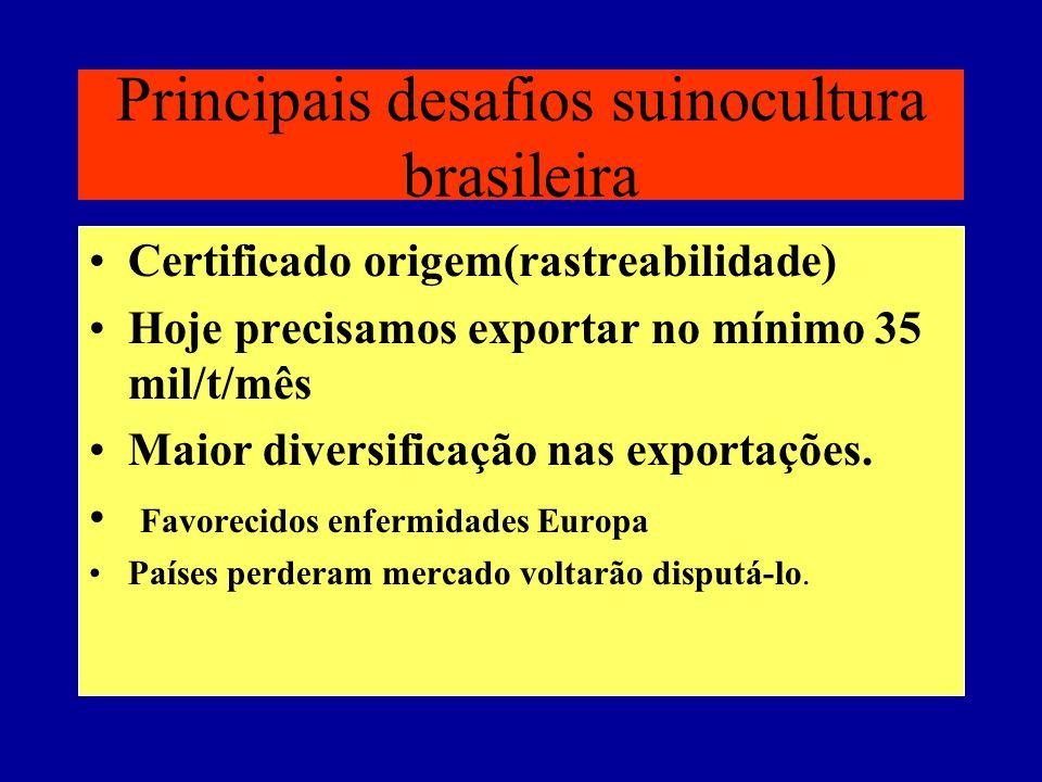 Principais desafios suinocultura brasileira