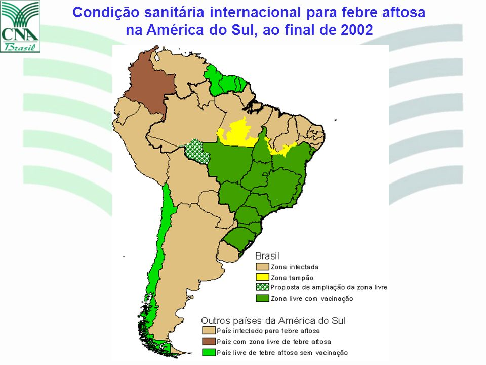 Condição sanitária internacional para febre aftosa na América do Sul, ao final de 2002